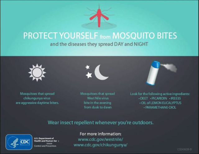 Protect Yourself_Mosquito Bites