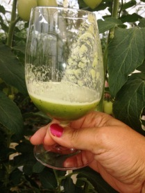 Just sampled the freshest green juice at the Karisma's Greenhouse!